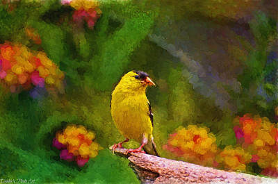 Summer Goldfinch - Digital Paint  Poster by Debbie Portwood