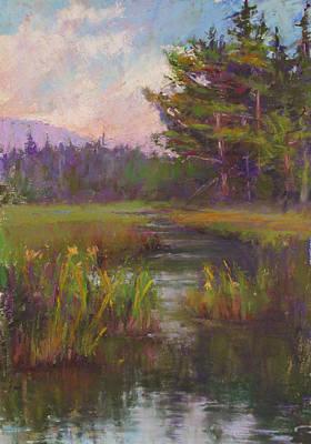 Summer Morning Beaver Marsh Poster