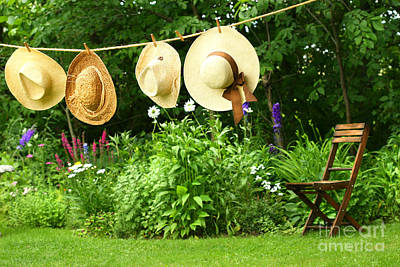 Summer Straw Hats Hanging On Clothesline Poster