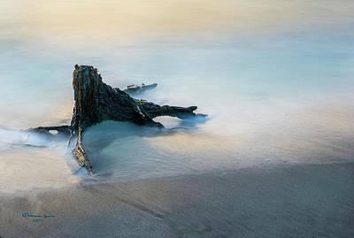 Summer Tide Poster