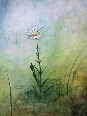 Summer Wildflower Poster