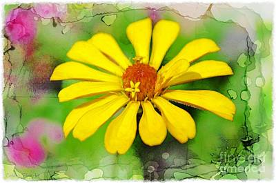 Summer Zinnia  Poster by Debbie Portwood