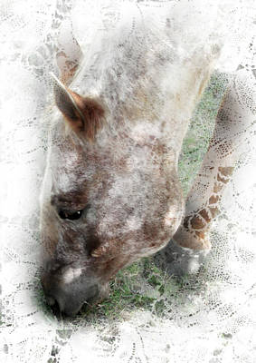 Sun Dappled Horse - Impressionist Equestrian Country Art Poster by Rayanda Arts