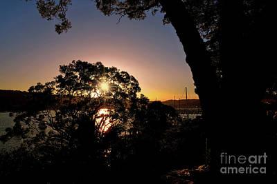 Sunburst Silhouette By Kaye Menner Poster by Kaye Menner