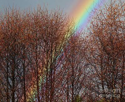 Poster featuring the photograph Sunday's Rainbow by Laura  Wong-Rose