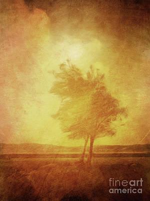 Sundown Landscape Poster by Lutz Baar