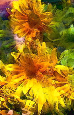 Sunflower 6 Poster by Pamela Cooper