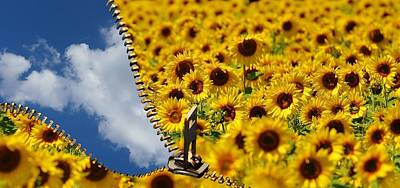 Sunflower And Blue Sky Poster by Daniela Guidotti