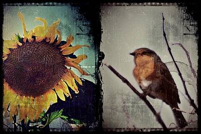 Sunflower Bird Diptych Poster