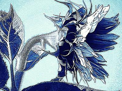 Sunflower - Denim Blues And White Poster