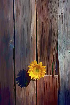 Sunflower In Barn Wood Poster