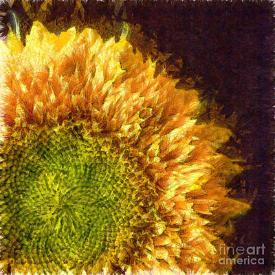 Sunflower Pencil Poster by Edward Fielding