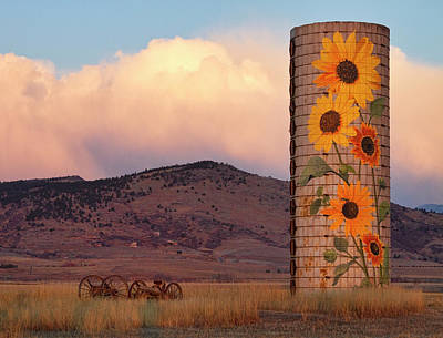 Sunflower Silo In North Boulder County Colorado Color Print Poster by James BO  Insogna