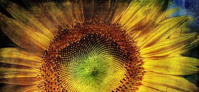 Sunflower Poster by Vittorio Chiampan