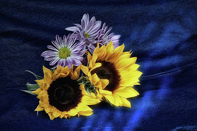 Sunflowers And Daisies Poster