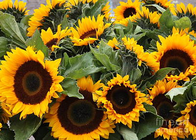 Sunflowers At The Market Poster