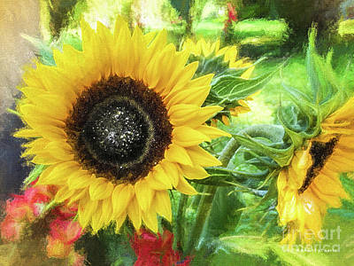 Sunflowers Flourish Visions Of Summer Poster by Mona Stut