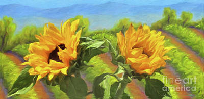 Sunflowers In The Vineyard Poster by Jerome Stumphauzer