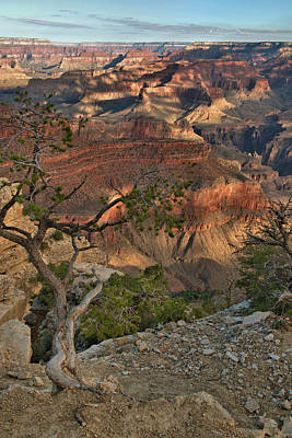 Poster featuring the photograph Sunkissed Canyon by Stephen  Vecchiotti