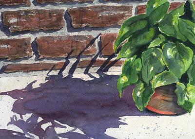 Sunlight And Shadows Poster by Marsha Elliott
