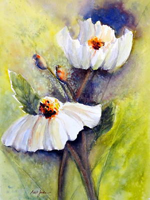 Sunlit Faces - Matilija Poppies Poster