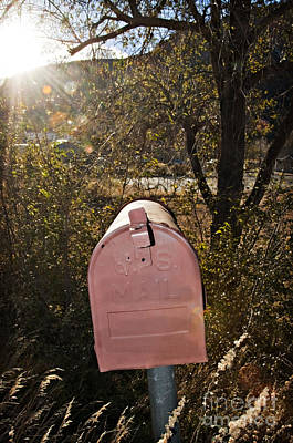 Sunlit Mailbox Poster by Ray Laskowitz - Printscapes