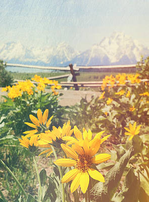 Sunlit Wildflowers And Grand Tetons Poster
