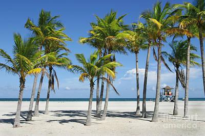 Sunny Miami Beach Poster