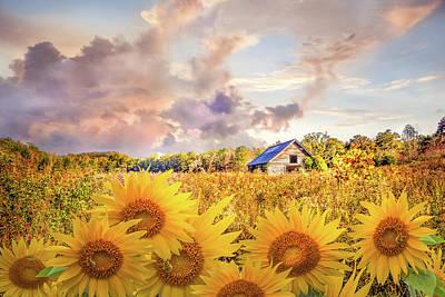 Sunny Summer Fields Poster by Debra and Dave Vanderlaan