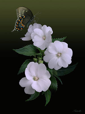 Sunpatiens And Swallowtail Butterfly Poster