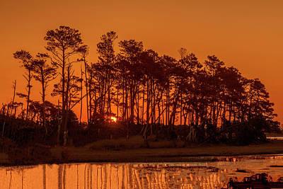 Sunrise Along A Tree Line Poster