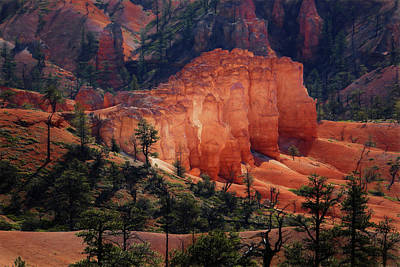 Poster featuring the photograph Sunrise At Bryce Canyon by Donna Kennedy