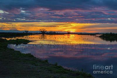 Sunrise At The Merced National Wildlife Refuge Poster