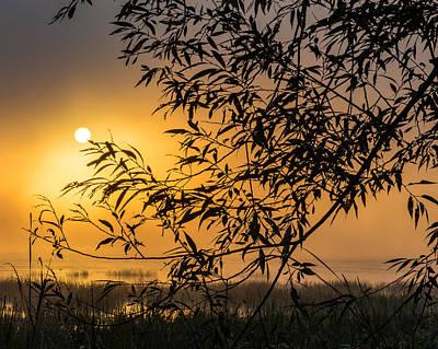 Sunrise Fog Poster