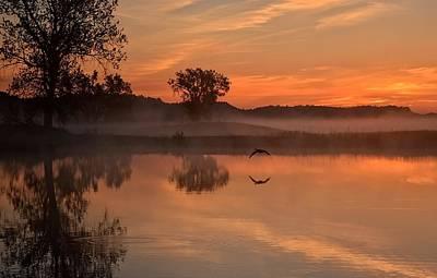 Sunrise Goose Poster