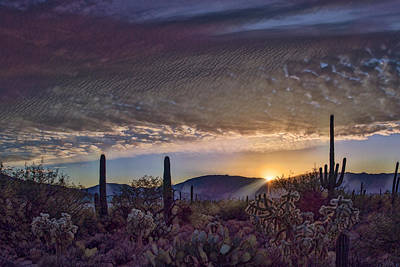 Poster featuring the photograph Sunrise In Sabino Canyon Remix by Dan McManus