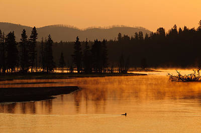 Sunrise Near Fishing Bridge In Yellowstone Poster by Bruce Gourley