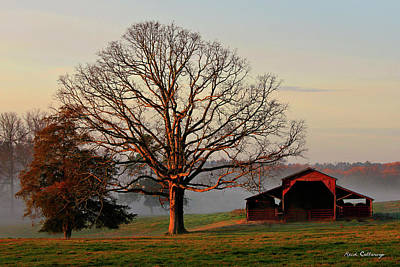 Sunrise Oak Red Barn Misty Morning Poster by Reid Callaway