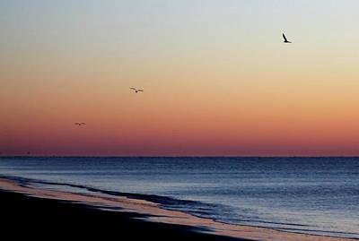 Sunrise On Hilton Head Poster by Bruce Patrick Smith