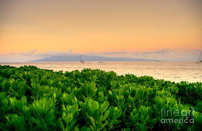 Poster featuring the photograph Sunrise On Maui by Kelly Wade