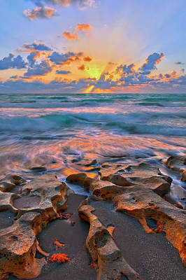 Sunrise Over Carlin Park In Jupiter Florida Poster