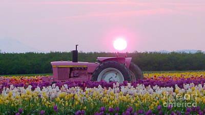 Sunrise Pink Greets John Deere Tractor Poster