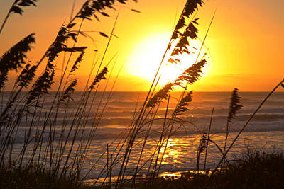 Sunrise Silhouette Poster