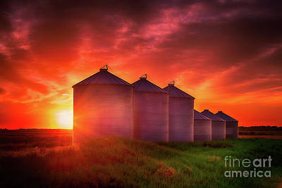 Sunrise Sublime Poster