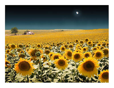 Suns And A Moon Poster by Mal Bray