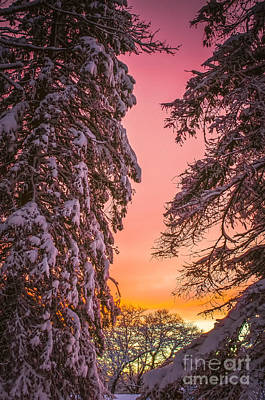 Sunset After Snow Poster