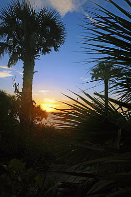 Sunset At Bearefoot Beach In Naples Poster