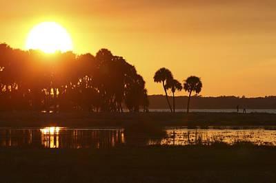 Sunset At Myakka River State Park In Florida, Usa Poster