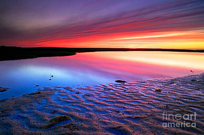 Sunset At Paines Creek Cape Cod Poster by Matt Suess