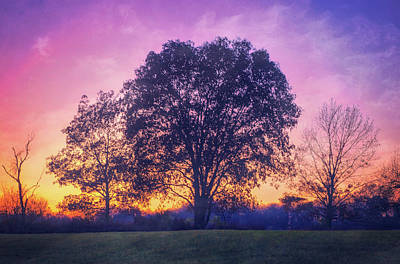 Sunset At Retzer Nature Center Poster by Jennifer Rondinelli Reilly - Fine Art Photography